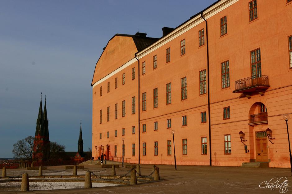 Uppsala slott, Uppsala Domkyrka