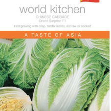 Chinese Cabbage Orient Surprise F1
