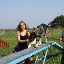 Hunden Hälge gillar höjder