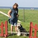 Hunden Tanja från hundgruppen