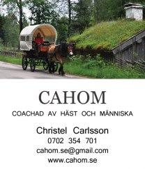 Häst & vagn för bröllop, turist, fest & högtider i Halmstad Halland