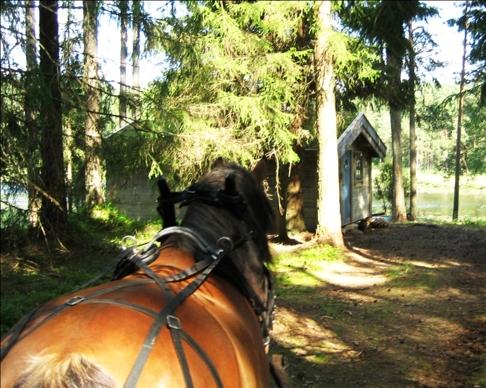 Skallinge Gård erbjuder  boende i timmerstuga och hästupplevelser i natursköna Simlångsdalen