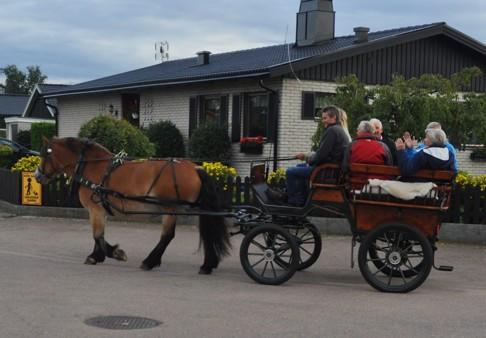Fira bröllopsdag med häst och vagn i Halmstad