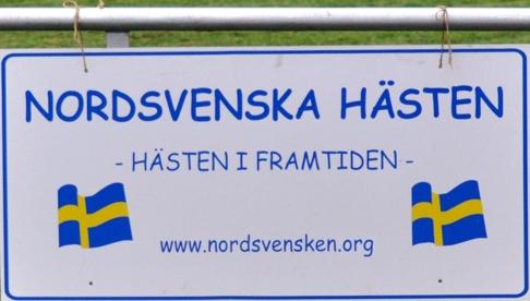 Den nordsvenska hästen är absolut den bästa hästen jag vet! Tack alla för att ni visade upp era fina föl. Hoppas att vi får se fler nästa år.