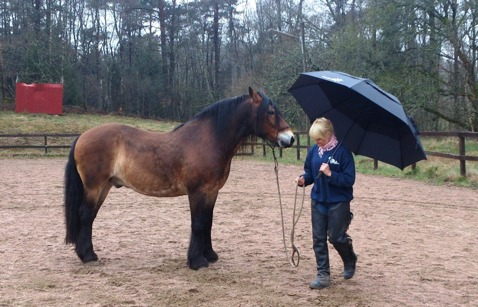 Vi hade tur med vädert men tänkte att det är säkrast att testa av stora paraply innan folket kom.