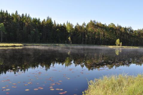Skallinge Gårds stuga, vy över sjön, fiske ingår i stugpriset