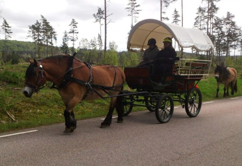 Agneta provar på att köra Liiv.