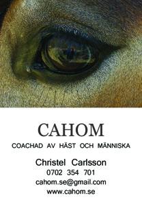 Christel Cahom Carlsson naturhälsopedagog