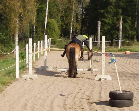 Momenten i bruksridningen kan variera, det som är viktigaste för mig är att hästarna blir miljötränade. Att träna för att tävla med hästarna är inte aktuellt.