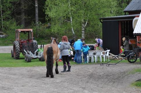 Bussen har precis släppt av förskolebarnen och de vuxna hjälper dem att få på överdragsbyxor. Är det några barn som vill följa med till stallet och se när vi selar på hästen?