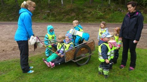 Barn är påhittiga! Här kör de hästar i par med förlöpare... Köbildning efter den gamla mjölkakärran. En tur ut i skogen hann de också med på deras utflykt. Tack för besöket hos mig och hästarna och varmt välkomna igen!