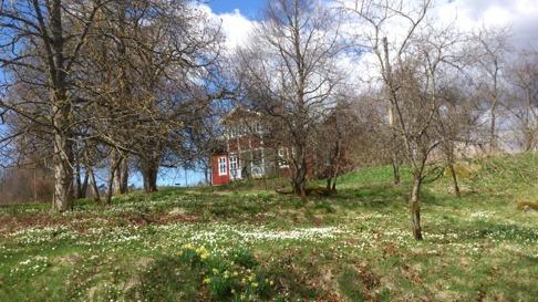 Vårskön natur i Simlångsdalen