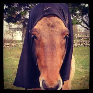 """Gandur som """"nunna"""". Bogskyddet halvvägs på..."""