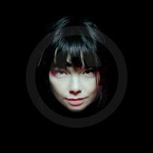 Björk_gavin_Evans