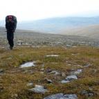 Dag 51 - Blåsigt och kallt i Gaskkasvággi
