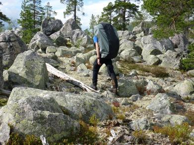 Dag 2 - Typisk terräng i Rogen naturreservat