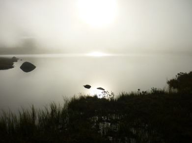 Dag 45 - Solljus i tät dimma på morgonen
