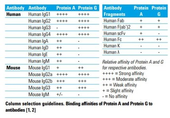 Agilent Bio-Monolith Column Selection Guidelines