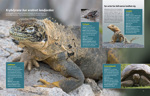 """One of the spreads from """"Illustrerad Vetenskap""""- I photographed for the extra magazine about the Galapgos Islands."""