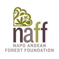 Research and protection of the Andean cloudforests