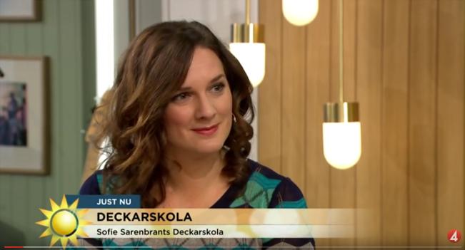 TV4 Nyhetsmorgon 29 november 2015.