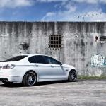 BMW_5 Series_VVSCV2_b83