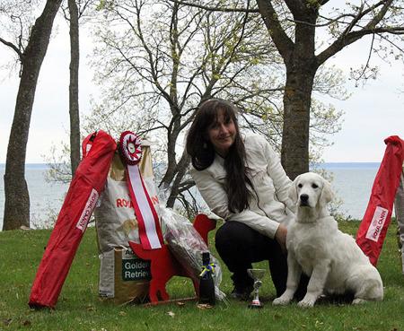 Penny BIS valp på GRK:s utställning i Hjo, 5 månader