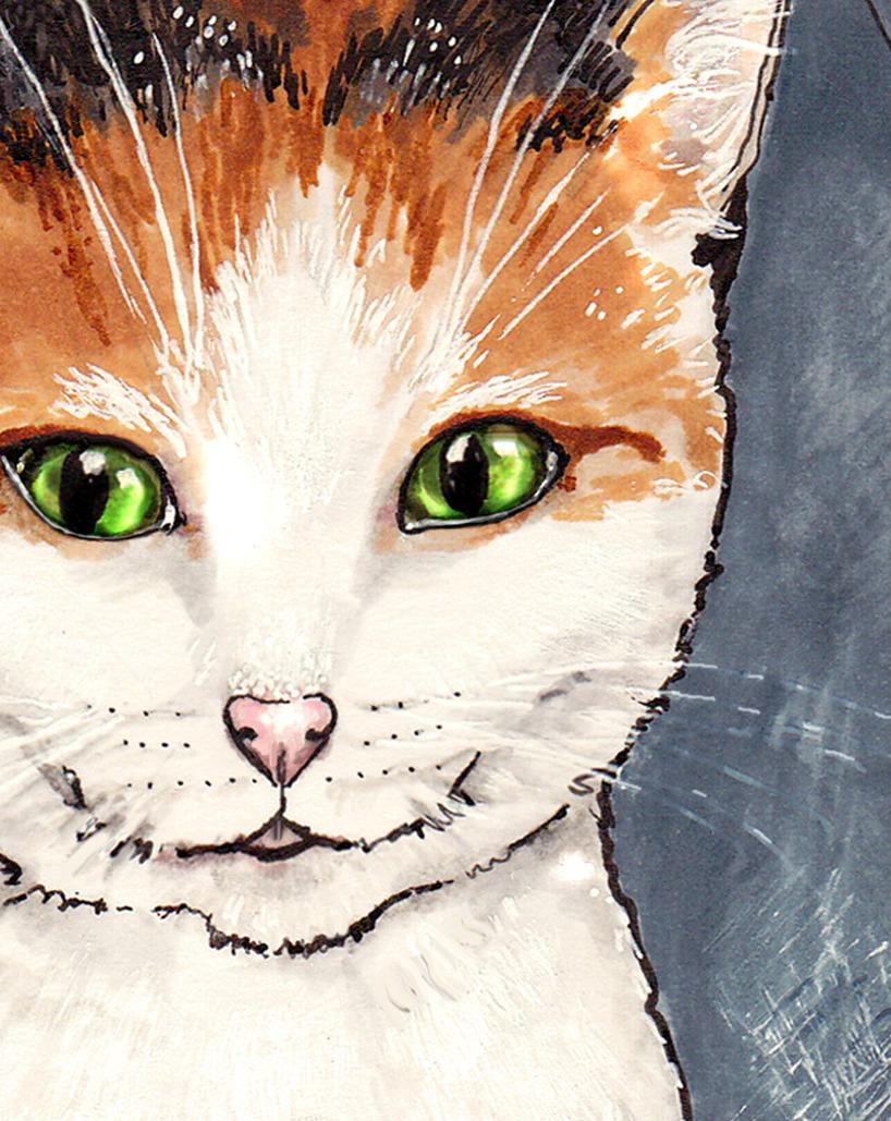 Katten Olivia ritad med Tria markers