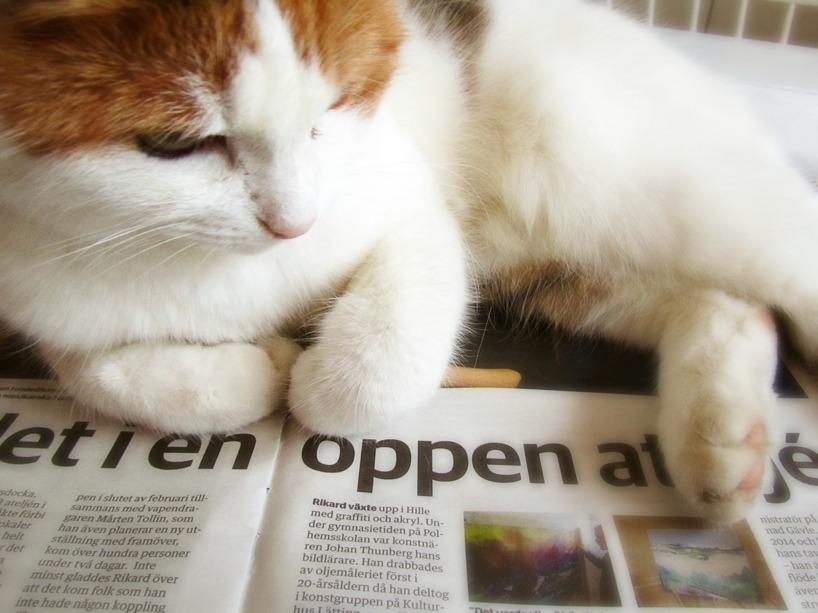 Olivia på tidningen