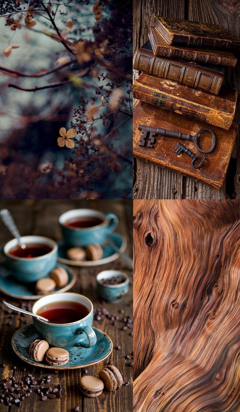 Vackra bilder i brunt