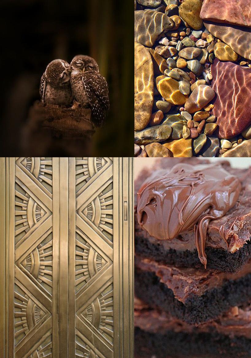 Vackra bilder i bruna toner