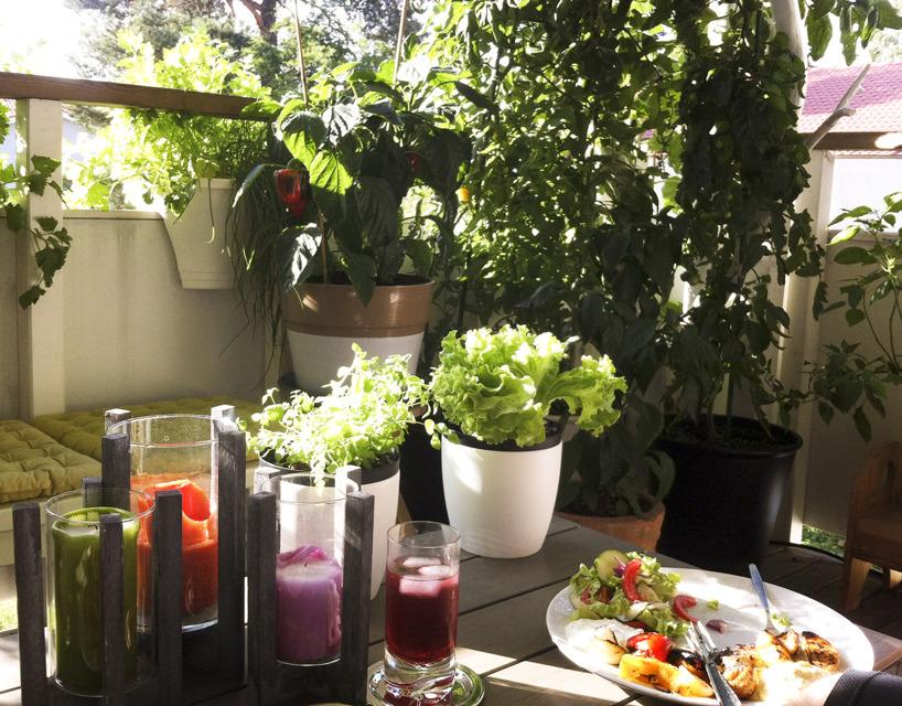 Grönsaker på balkongen