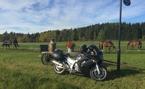 V.01.Hösttur i Sörmland fr @fjrmorrgan