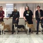 winning breeders group