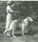 Ch Ekhaga Olga. Foto från 1950-tales Arendal, Signe Hallqvist