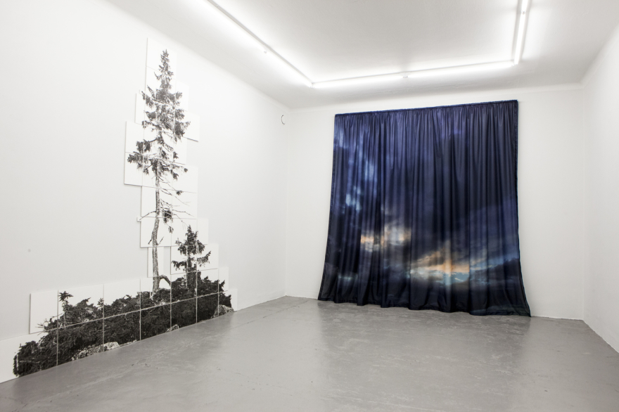 Lisa Strömbeck. Installationsbild: The Last Trees.