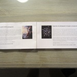 Official text in SIHH Catalogue 2013 in both French and English