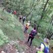 Lövskog Ucak