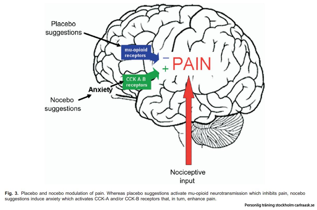 Billedresultat for nocebo-effekten