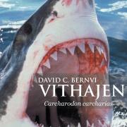 Vithajen Carcharodon carcharias - David C. Bernvi (Signerad)