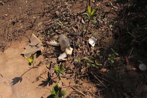 Skräp överallt i mangroveskogen. 10 kvadratmeter tog en timma att rengöra. Mikroplaster gick inte att ta upp. Bild: David C. Bernvi.