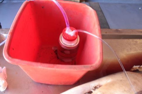 Pumpen placerades i en spann i fall den skulle gå sönder. Vi utvecklar tekniken. Bild: David C. Bernvi.