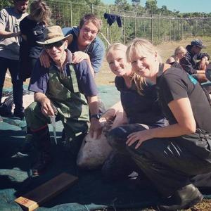 Hajforskarna som dissekterade vithajarna som strandade i Gansbaai, från vänster till höger: Megan McCord, Maclom Smale, Alison Towner och Alison Kock. Bild Alison Towner.