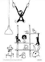 Monkey Bojesen