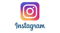 Pumikennel på instagram