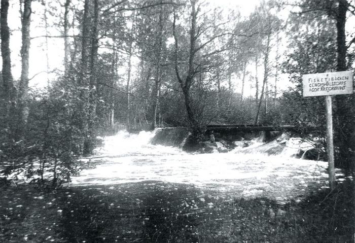 """B. 11 Hålltorps kvarndamm - Hålltörpadammen"""" på 1930-talet. Västergötlands Museum - bildarkivet/bildnummer: A145127:10 Fotograf: Nils Lann Hålltorps kvarndamm på 1930-talet. Dammen låg ovanför landsvägsbron c:a 250 m från kvarnen. När mjölnaren behövde malvatten fick han gå hit och öppna luckorna. Vattnet rann sedan fritt till en krök av bäcken. Här leddes det in till kvarnen genom en stensatt trumma som gick under """"Kvarnagärdet"""". Bilden är tagen vid en översvämning efter ett ymnigt regn. Hålltorps kvarn låg bakom nuvarande Tre Bäckar. Av kvarnhuset återstår endast undervåningen, vilken gjordes om till simbassäng. (Text NIls Lann). Insatt av Kent Friman, 2014-02-25. Läs mer på www.ljungstorspshistoria.se!"""