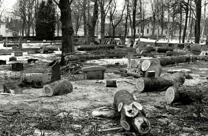 C. 20 Vårvintern 1978 avverkades överåriga askar på kyrkogården. Insatt av Kent Friman, 2014-02-26.