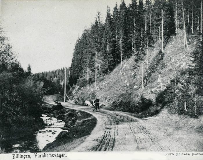 E. 10 Landsvägen från Varnhem till Skövde omkring 1904. Bilden tagen i den s.k. Kullaliden ovanför nuvarande bensinstation. Foto Ludvig Ericson, Skövde. Insatt av Kent Friman, 2014-03-02.