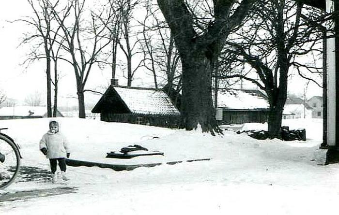 Bild från Gudrun Ramviken, Sörgården, Varnhem, 2014