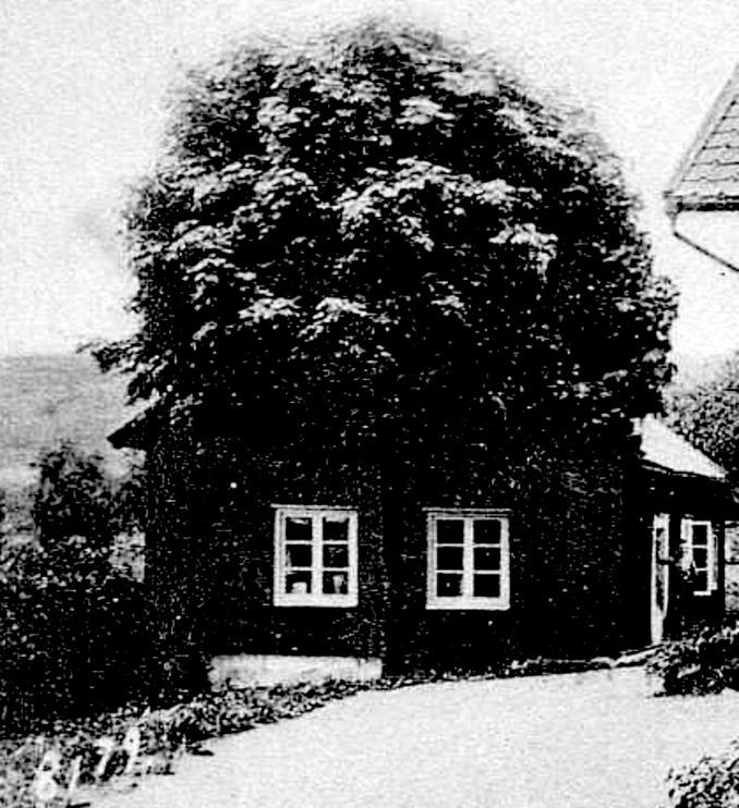 Detalj av bild från Förbergs samling via Astrid Blomqvist, Tomten, 2015. Fotot är taget av Ludwig Ericson, Skövde 1904.